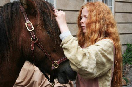 Horse breeding software