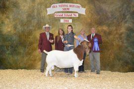 aAprina Acres Boer Goats
