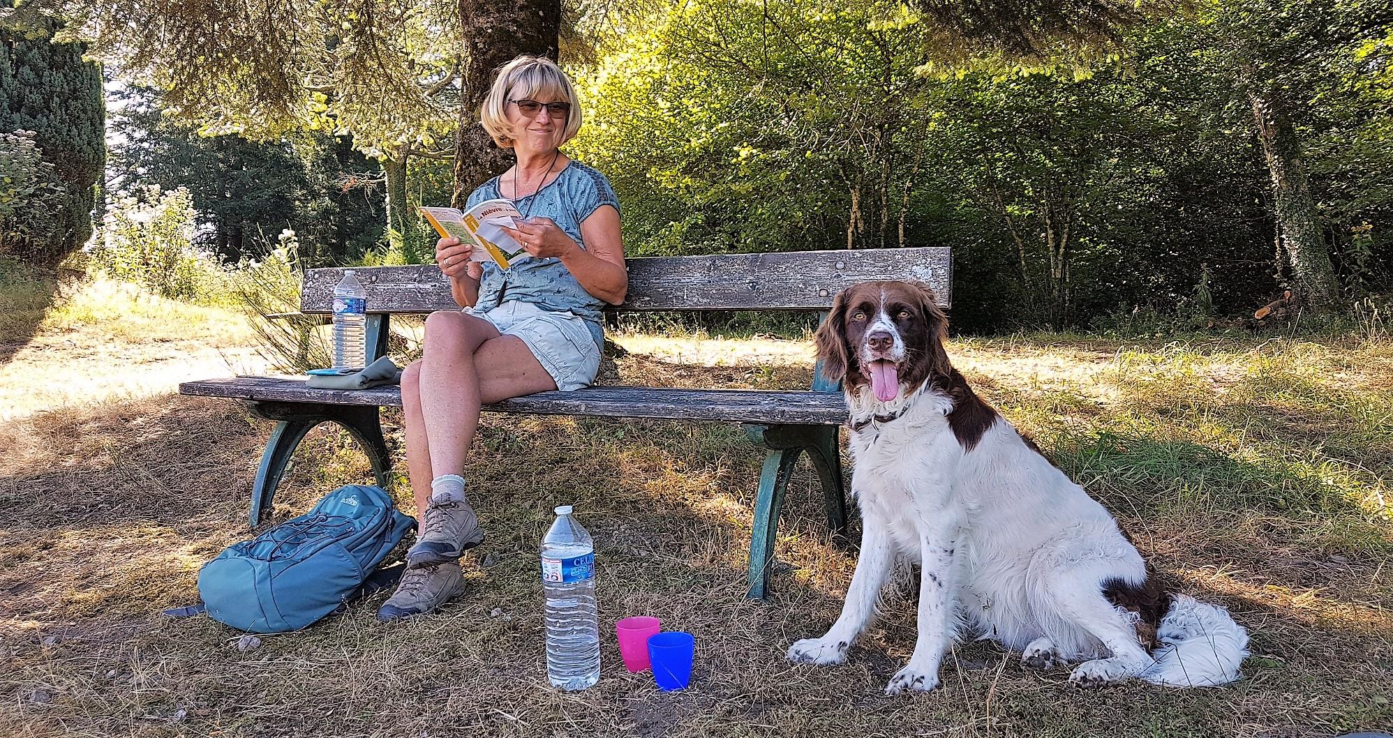 Drentsche Partridge Dog Association