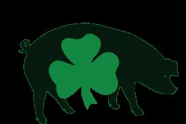 Irish Pig Society Ltd