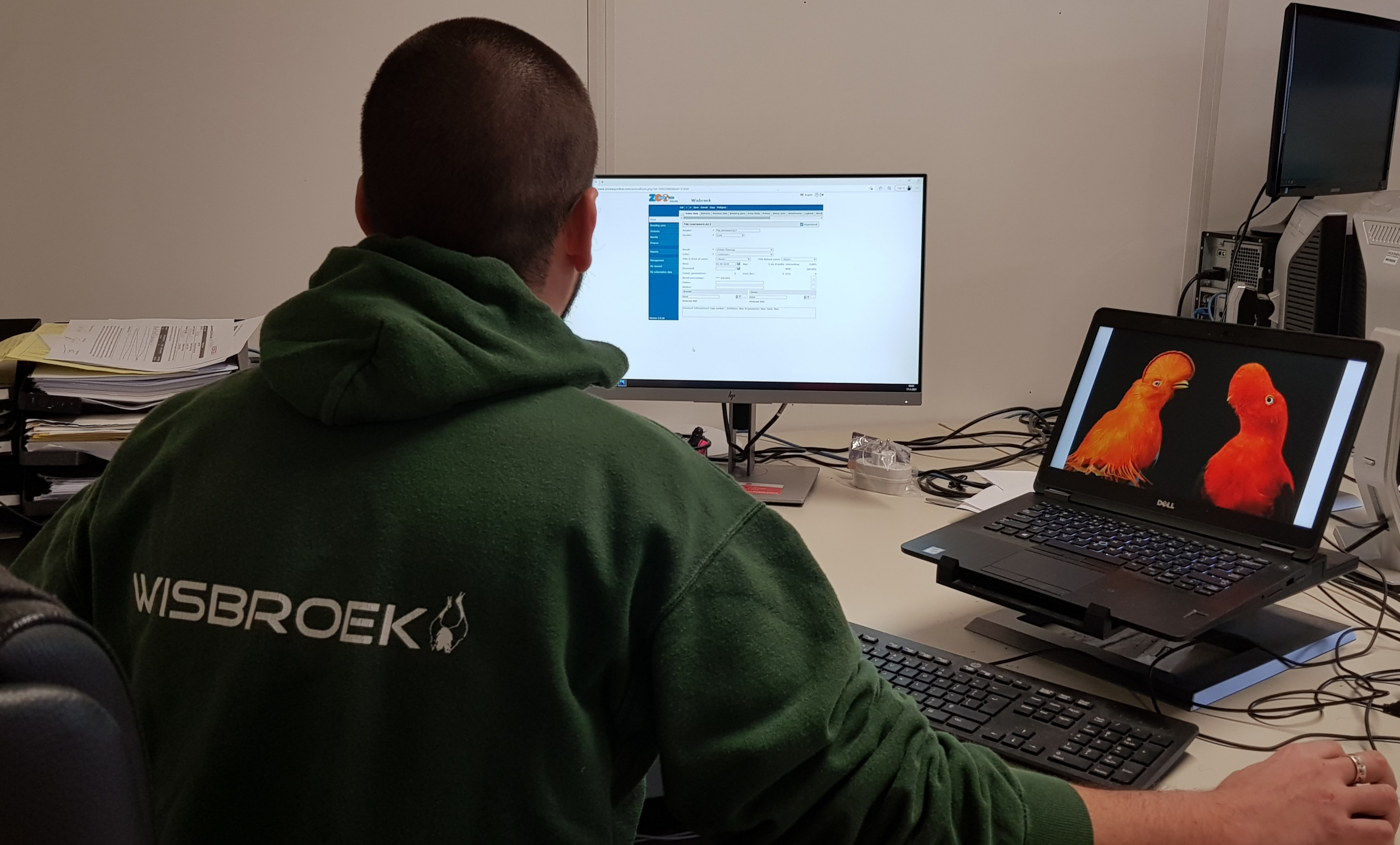 A professional move to ZooEasy Online